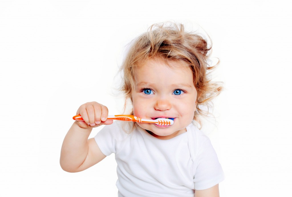 48036983 - curly baby toddler brushing teeth. isolated on white background.